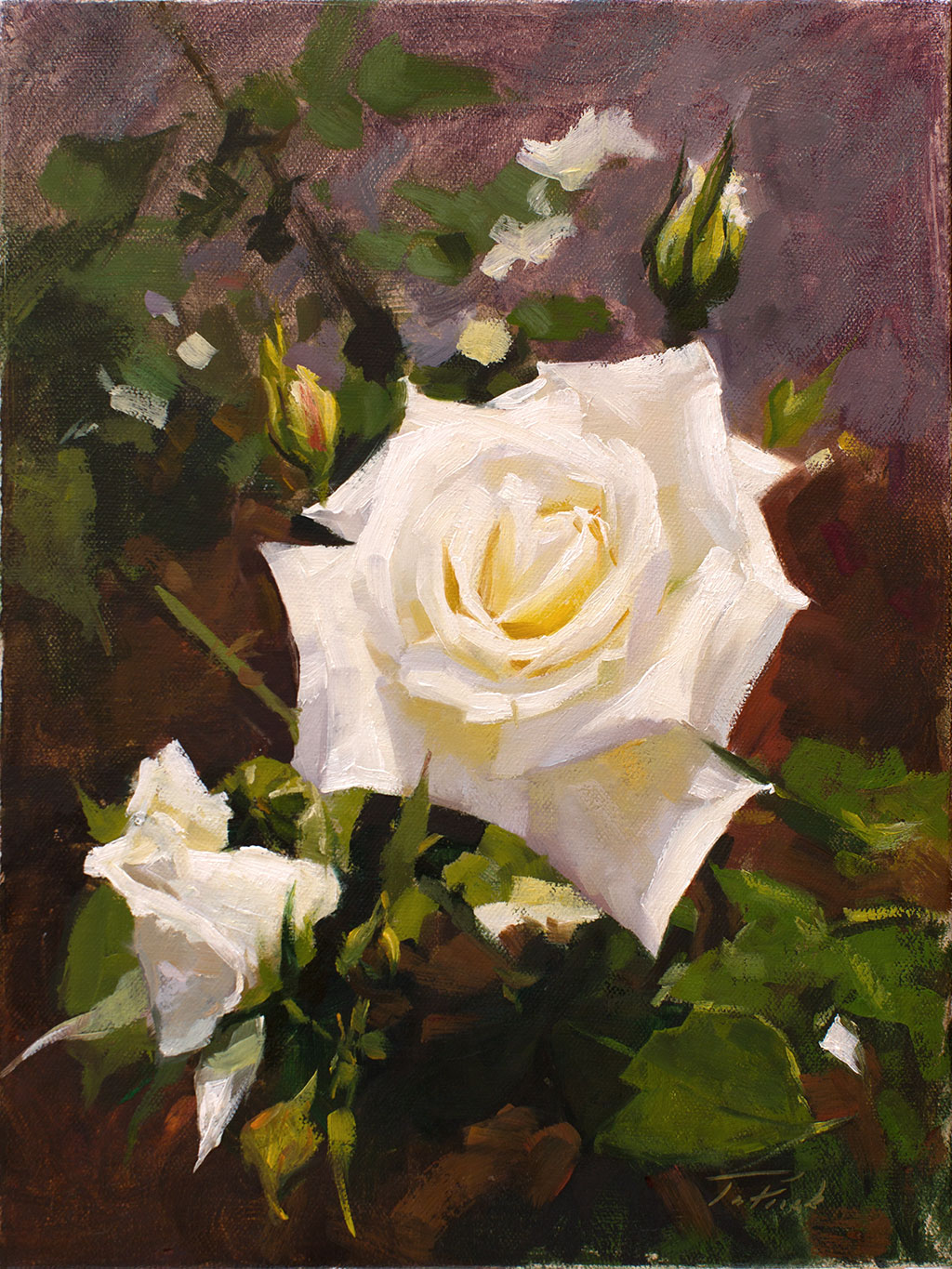 Patrick Saunders Fine Arts Floral Painting Oil on Canvas White Rose